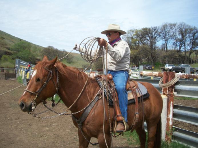 Cowboy Up by Jason Springston
