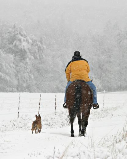 Snowfall by Gaye Smith