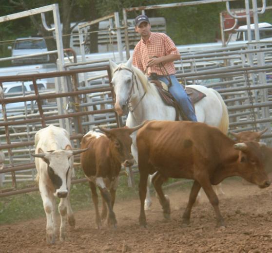 The Cowboy Way by Iris Neale