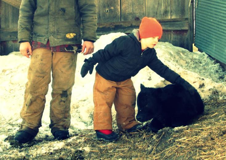 Clay & His Calf by Jennifer Reddig