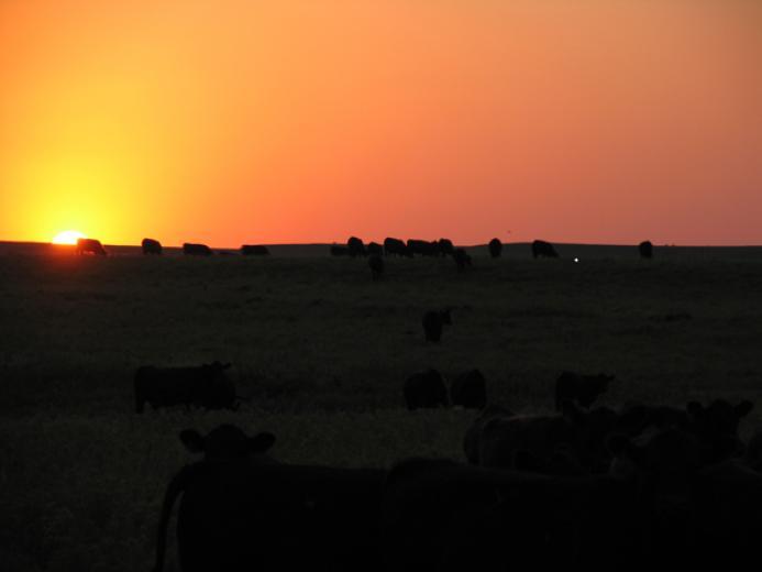 Sun setting on the Flint Hills by Wyatt Bechtel