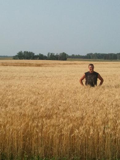 Wheat Field by Sierra Angell