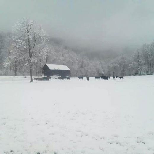 Winter On The Ranch by Mike