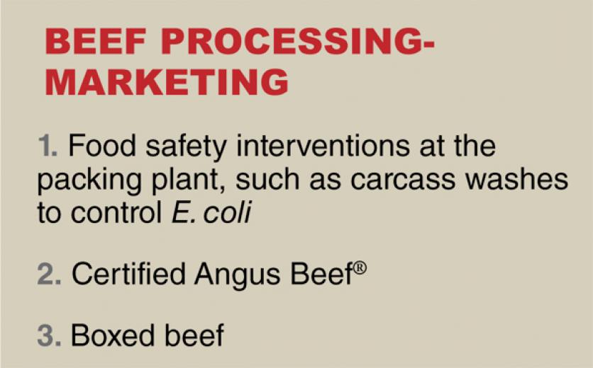 What were the most important innovations in beef processing/marketing (packer to wholesale to retail)?