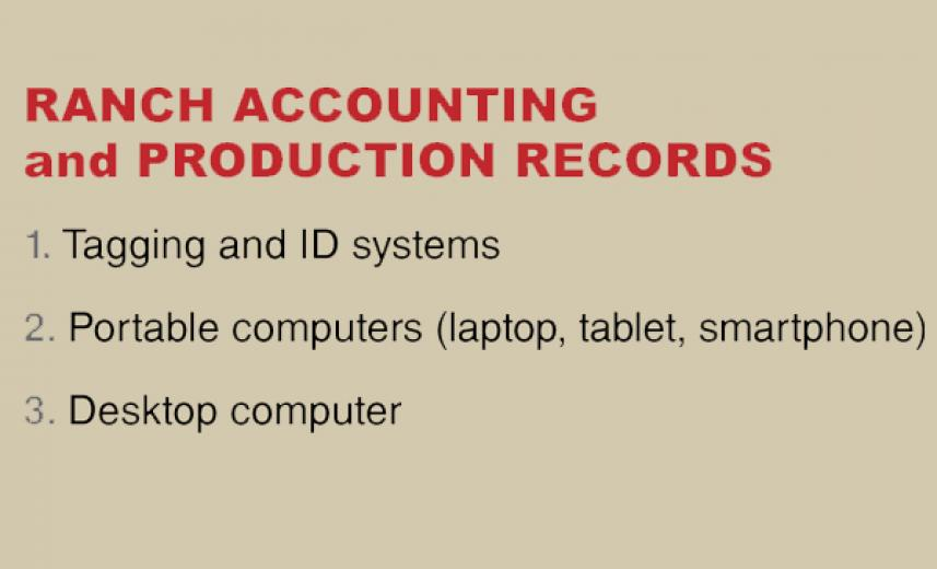 What were the most important innovations in ranch accounting and production records?