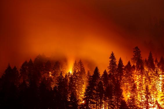 6 Trending Headlines: Fires devastate Oregon ranching community; PLUS: Managing with limited forage