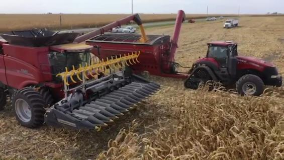 This Week in Agribusiness, October 31, 2020