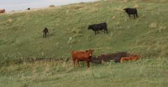 Farm safety