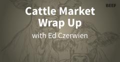 Cattle Market Wrap-up