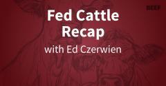 Fed Cattle Recap