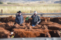 The cow-calf operation is the first stage of the beef supply chain, therefore it is critical to lay a solid health foundation through management and vaccination practices.