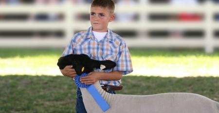 Young boy holding blue ribbon with winning goat