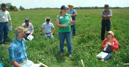 Susannah Hinds explains various ways to lay out paddocks to participants at a pasture workshop