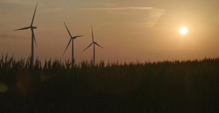 windmills and corn