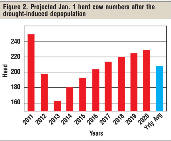projected january 1 cow numbers