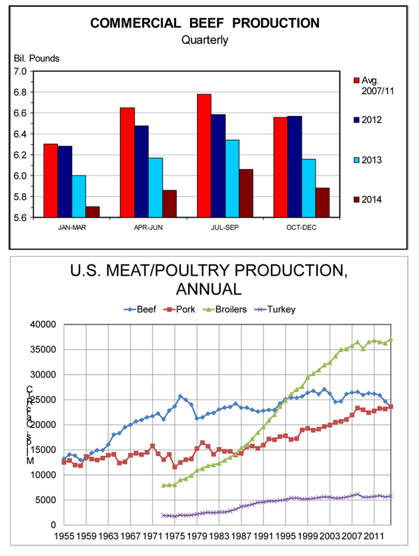 commercial beef production versus pork production in 2013