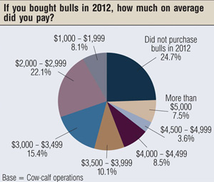 bull prices in 2012