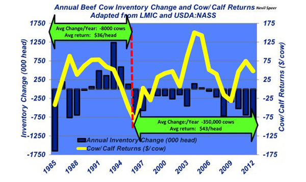 annual beef cow inventory