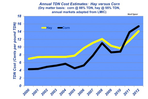 beef cattle feed prices, corn vs. hay