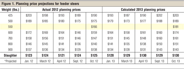 2013 planning projections for feeder steers
