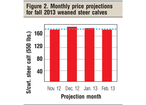 monthly price projections for 2013 beef calves