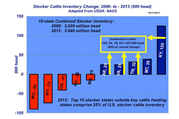 stocker cattle inventory shift