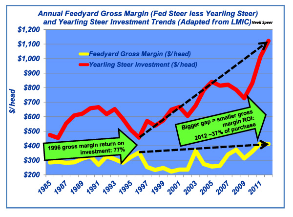 annual feedyard gross income