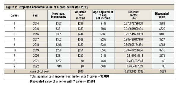 projected economic value of bred heifer