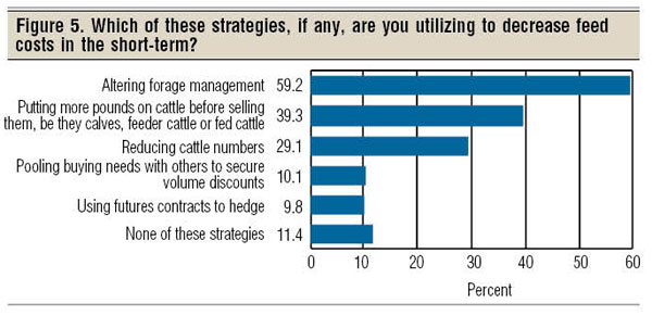 cattle feed management strategies