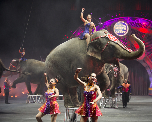 ringling bros circus fights animal extremists