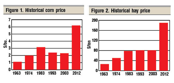 historical hay & corn prices