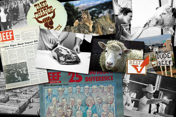 50 years of beef industry coverage