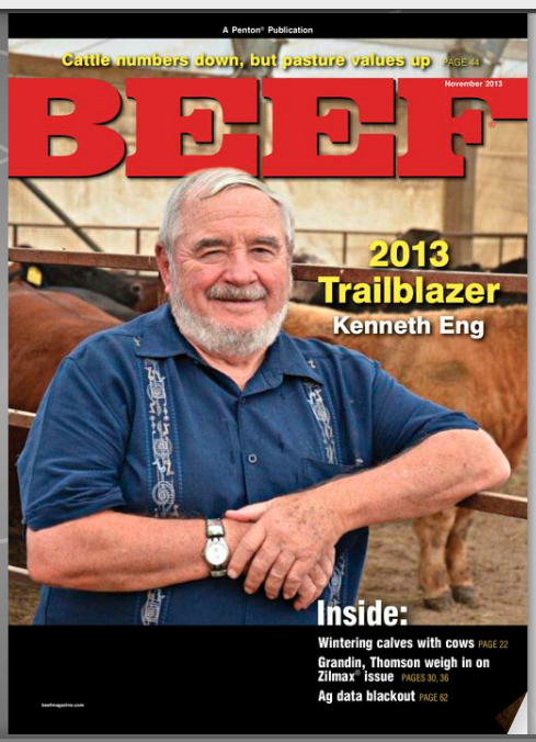 BEEF digital edition - November issue
