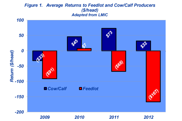 average returns to feedlot and cowcalf