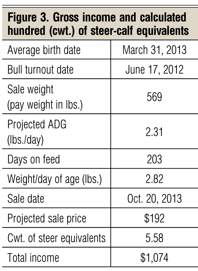calculated steer prices