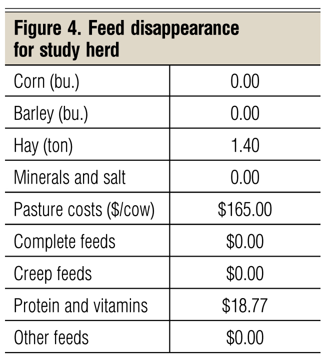 feed disappearance for study herd