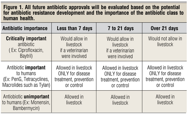 antibiotic approval for animals