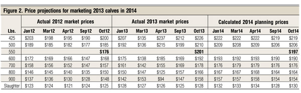 price projections for 2013 beef calves