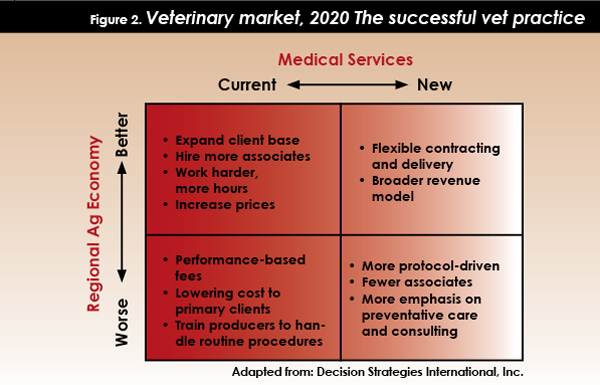 what is a  successful vet practices in 2020