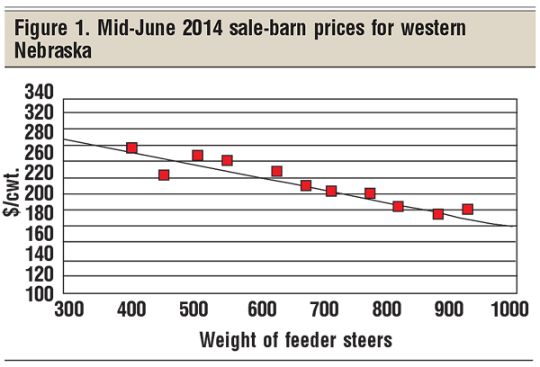 mid-june 2014 sale barn prices