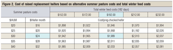 cost of replacement heifers