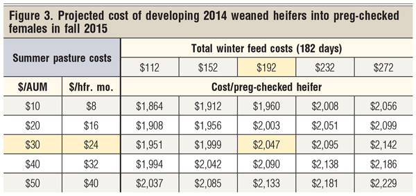 projected cost of developing 2025 females