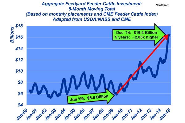 feedyard investment