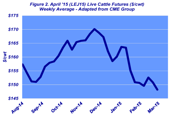 live cattle prices