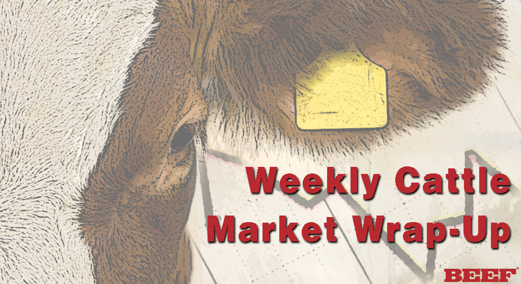 Cattle Market Audio