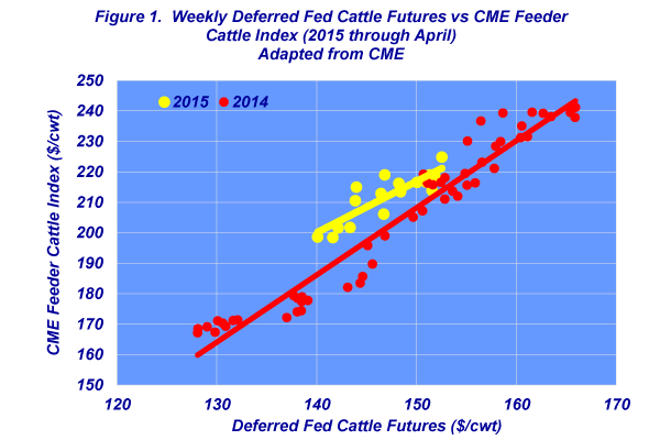 weekly deferred fed cattle prices