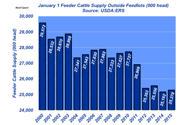 january 1 feeder cattle report