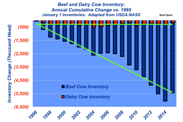 beef and dairy cow inventory