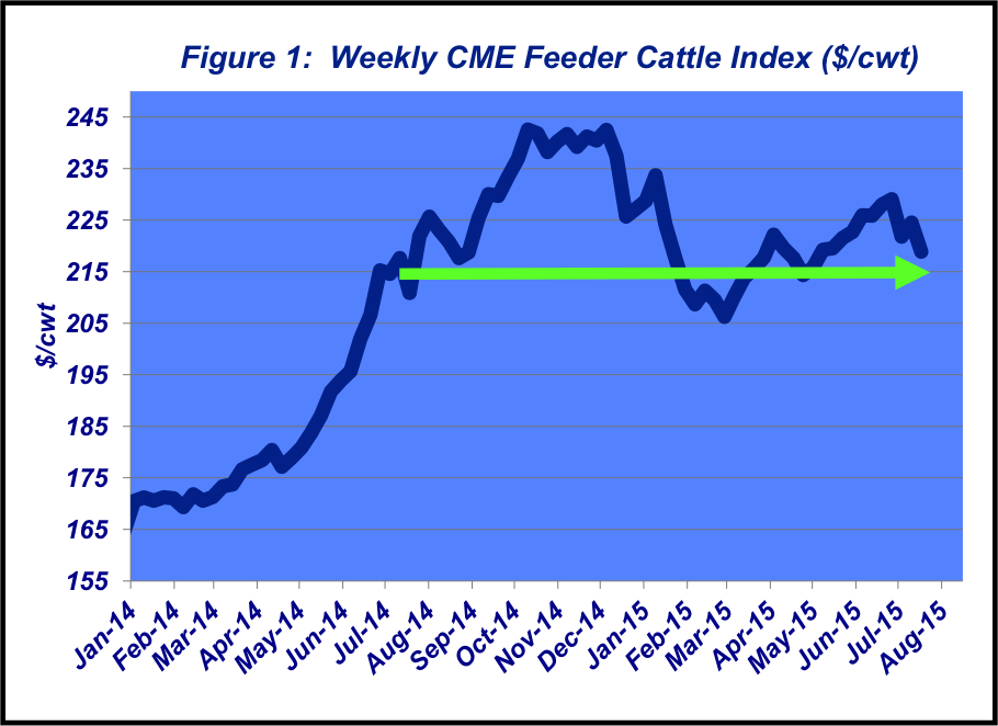weekly cme trends