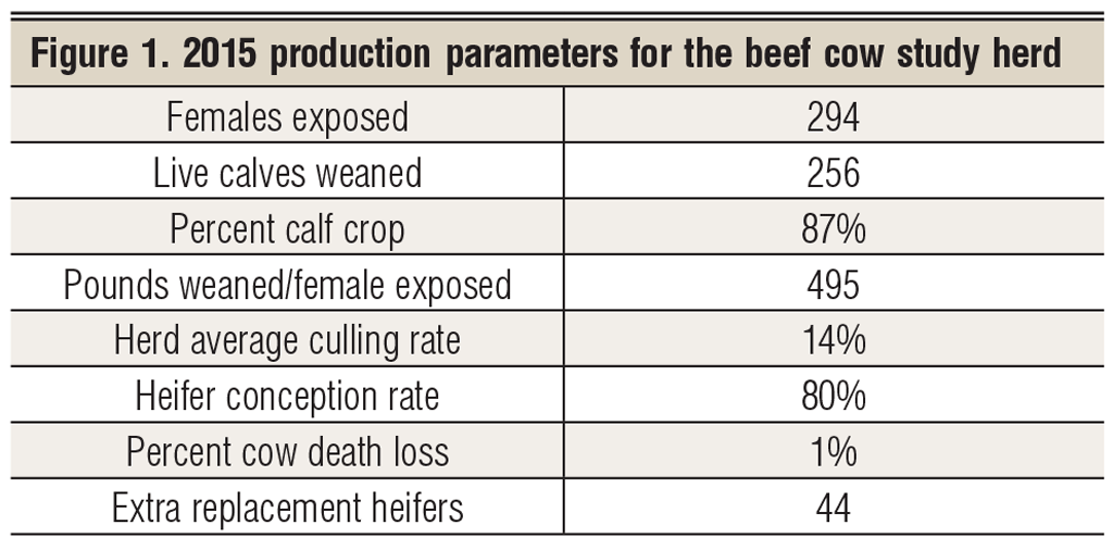 2015 production parameters